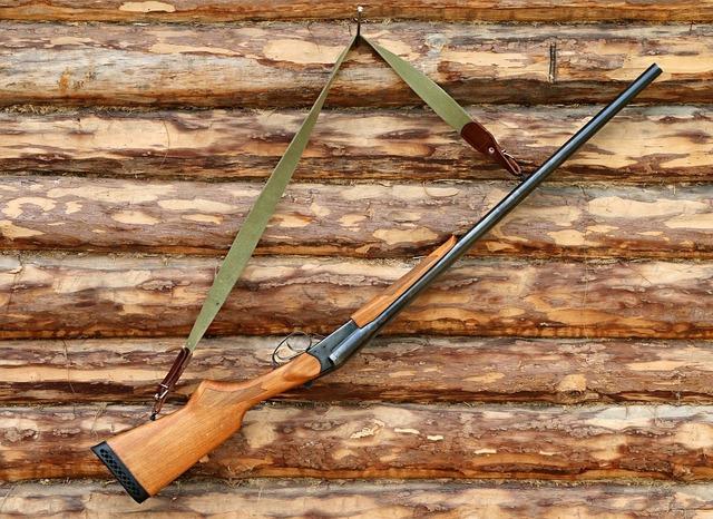 shotgun-1503130_960_720.jpg