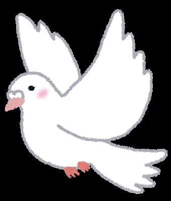bird_shiro_hato.png